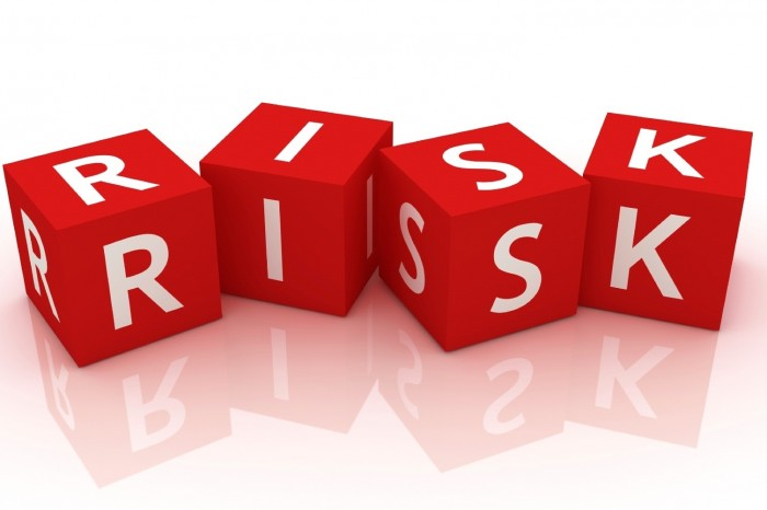 Risks in large scale IT projects